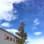 台風一過と秋の気配~《スキレット日記:2020-09-07@高松市多肥下町・スキレット》
